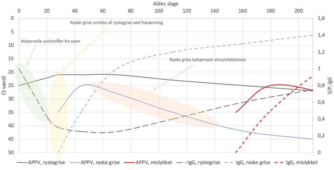 APPV graf